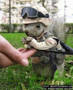 well no wonder he loves the army! look at that precious little guy